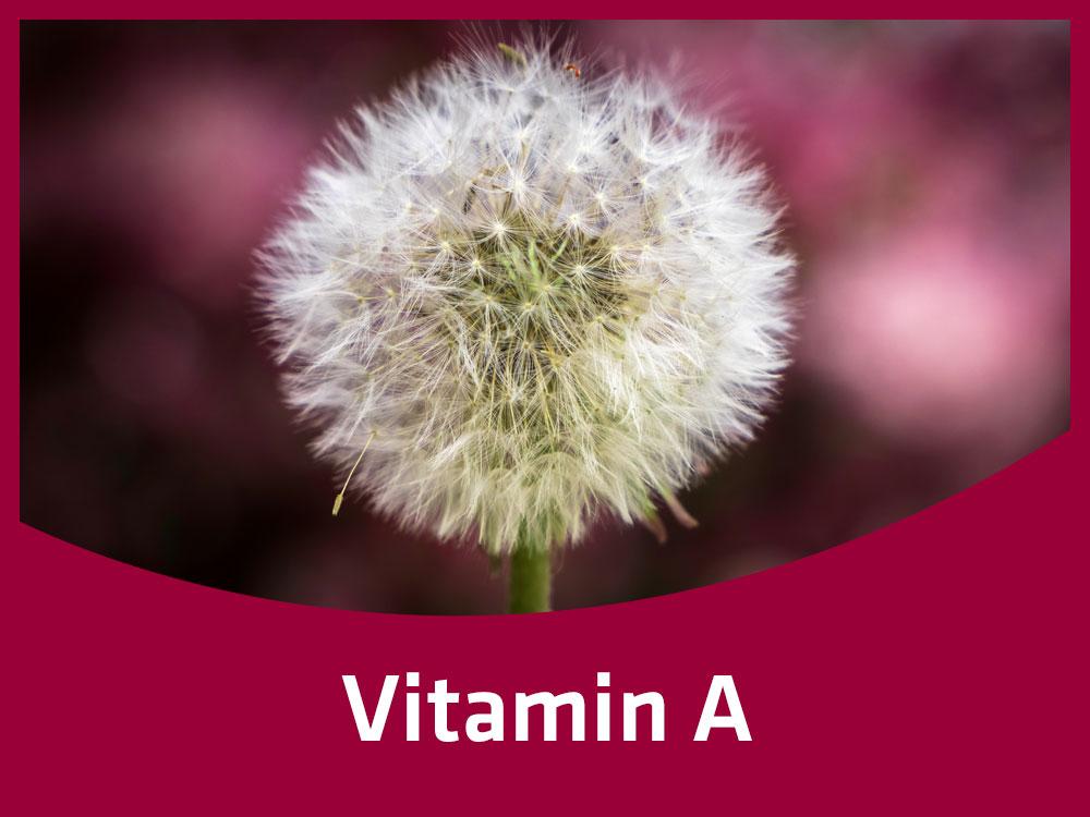 Vitamin_A.jpg